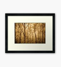 Whispering Snowstorm Framed Print