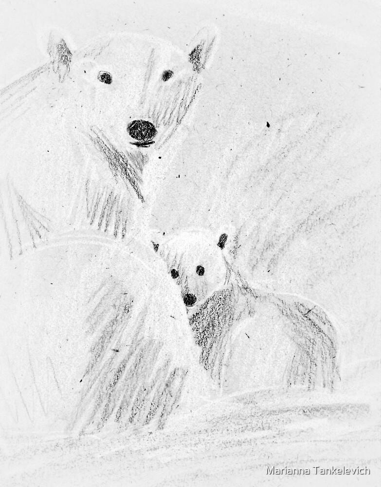 polar bears by Marianna Tankelevich