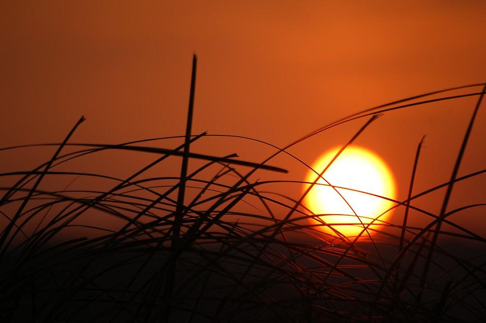 sunset over Mango 1 by Aina Antonsen