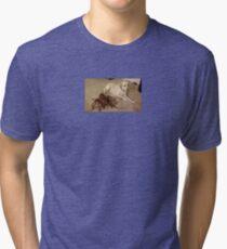 dog and crusty Tri-blend T-Shirt