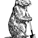 Prairie Dog (Take a break) by bradyqk