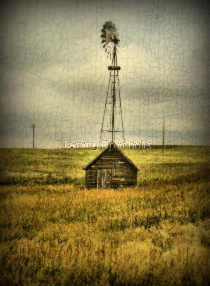 Prairie Pump by TingyWende