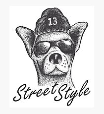 STREET STYLE Wear Puppy Dog Hipster Hat & Sunglasses Design Photographic Print