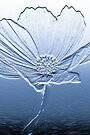 Blue Cosmos by John Velocci