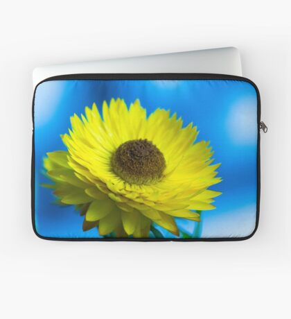 Strawflower Laptop Sleeve