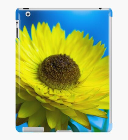 Strawflower iPad Case/Skin