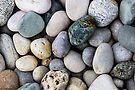 On The Rocks by John Velocci
