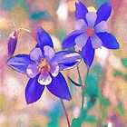 Colorado State Flower by ArtOLena