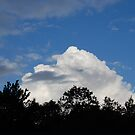 puffy cotten cloud by storm22