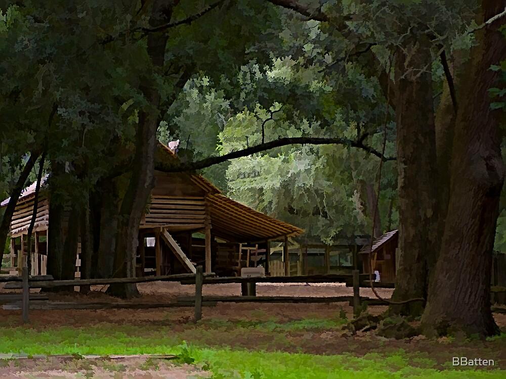 The Barnyard by BBatten