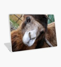 camel Laptop Skin
