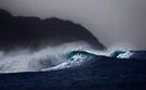 Hula Waves by Alex Preiss