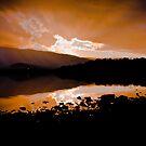 Days Last Rays by Rob Brooks