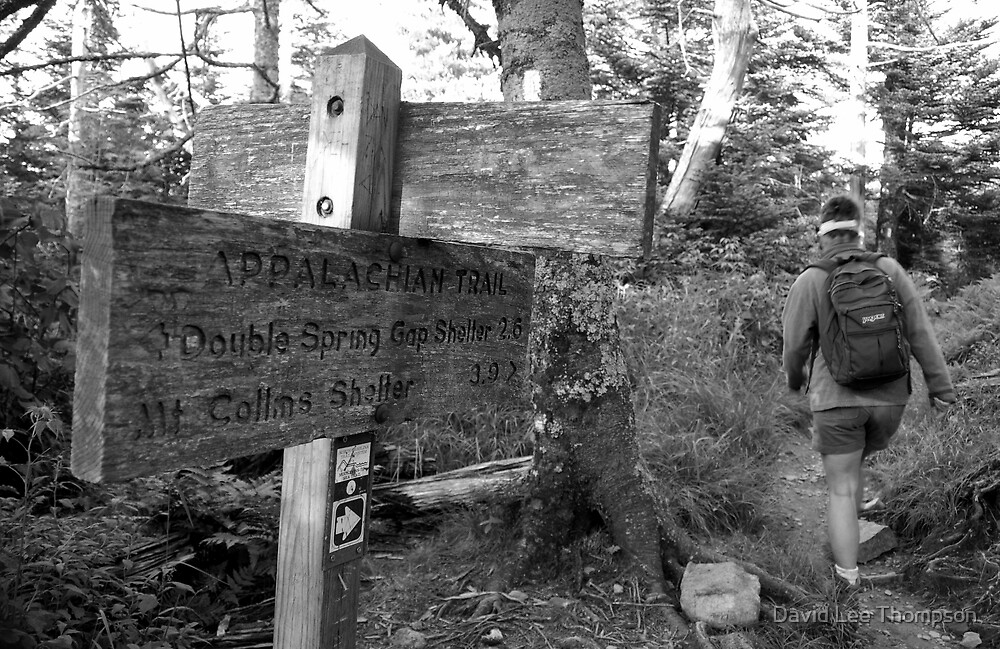 Appalachian Hike by David Lee Thompson
