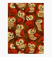 Northern Saw-whet owls pattern. Photographic Print