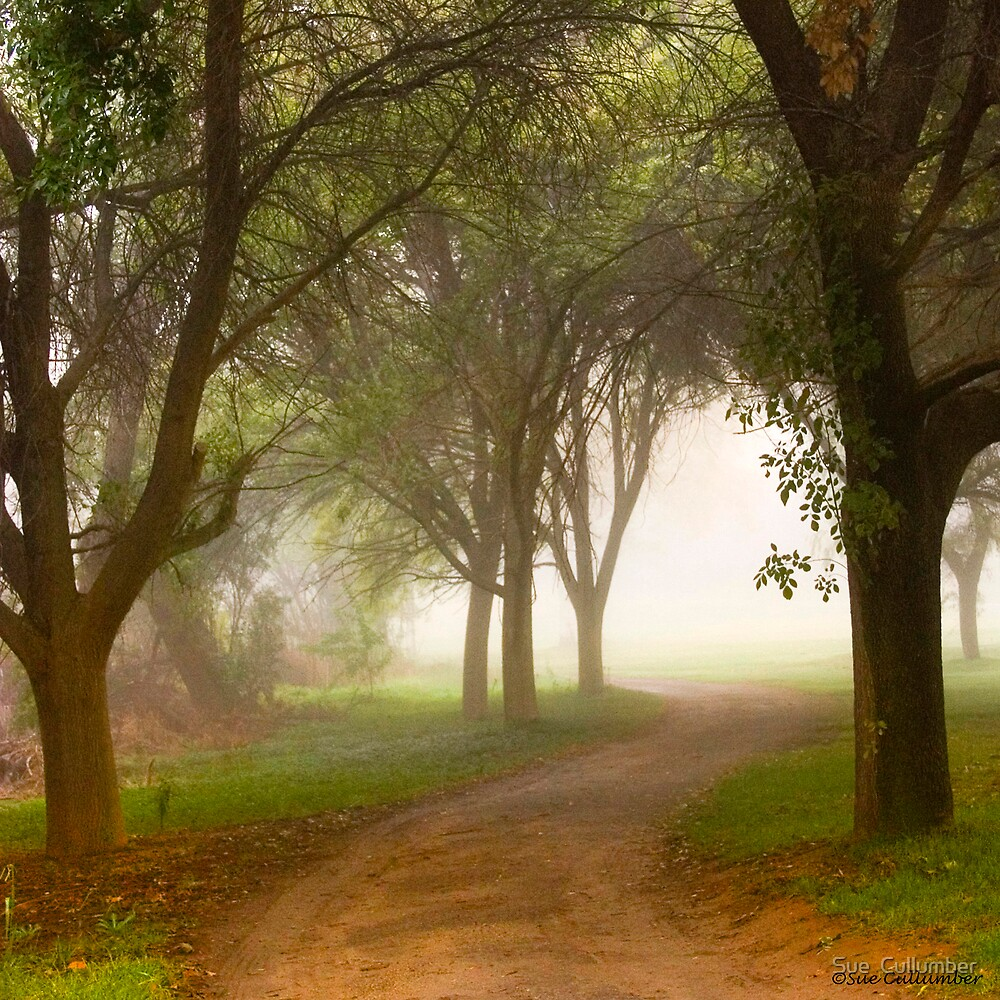 Into the Mist by Sue  Cullumber