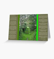 Desiderata Grass Road leading under some willow trees  Greeting Card