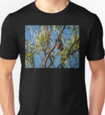 Two bats wrapped together in a gum tree in Australia T-Shirt