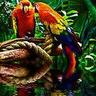 Birds of a Feather by jlynn