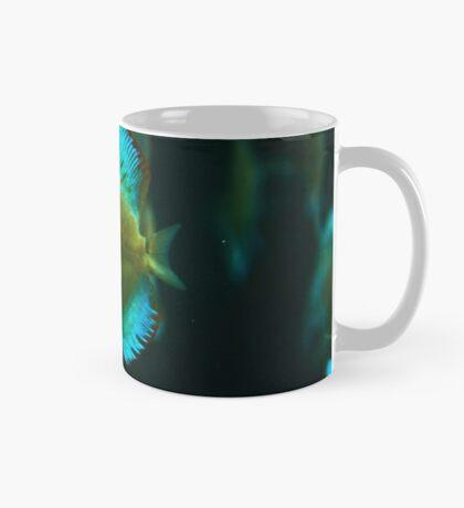 A fish 1 Mug