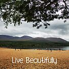 Live beautifully by designsbyt0tsy