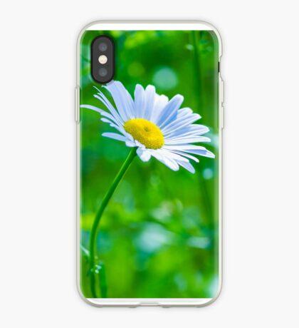 Daisy 6 iPhone Case