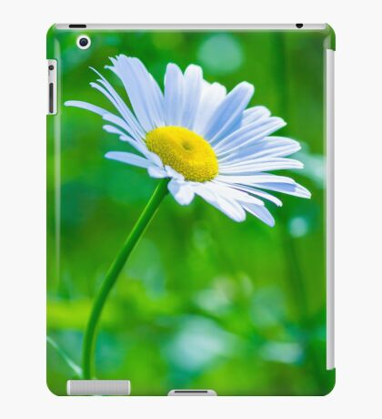 Daisy 6 iPad Case/Skin