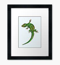 Gecko Framed Print
