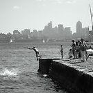 Cooling Off! Sydney Harbour, Australia by Of Land & Ocean - Samantha Goode