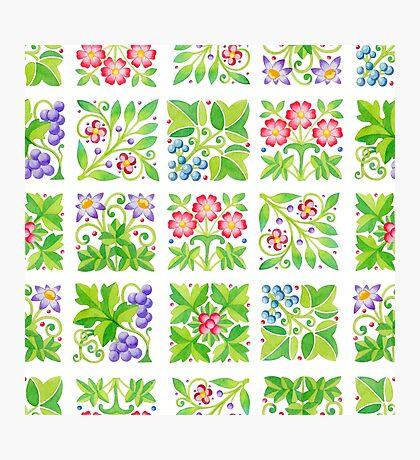 Tudor Flower Parterre Photographic Print