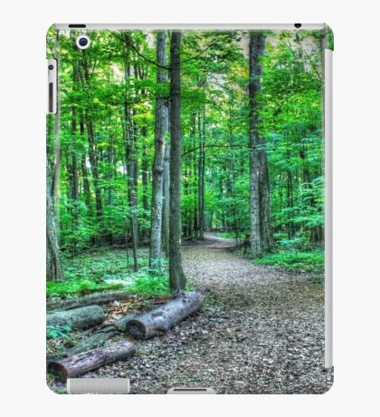 Forest 3 iPad Case/Skin
