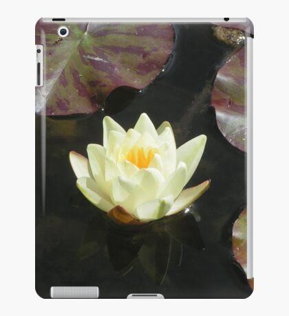 Parceval House garden Yorkshire iPad Case/Skin