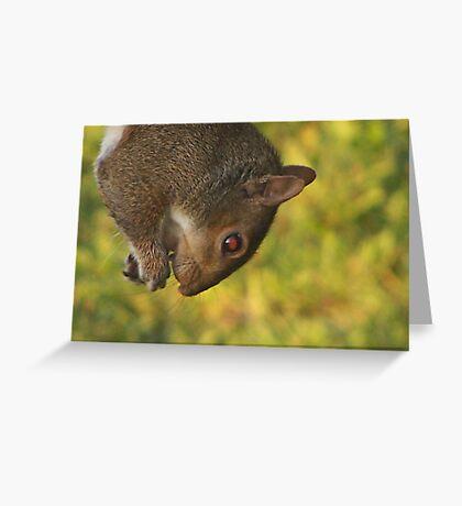 I Pray I don`t Lose My Grip Greeting Card
