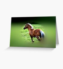 Galloping Gallantly Greeting Card