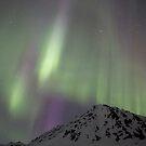 Night Lights #17 by akaurora