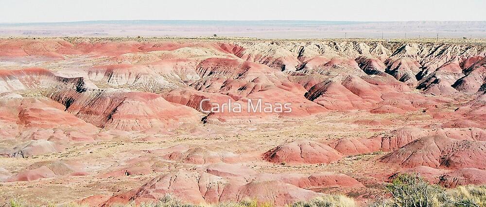 Painted Desert by Carla Maas