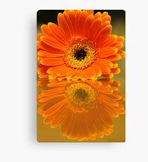 Double Orange Canvas Print
