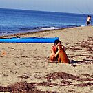 Cape Cod by photorolandi