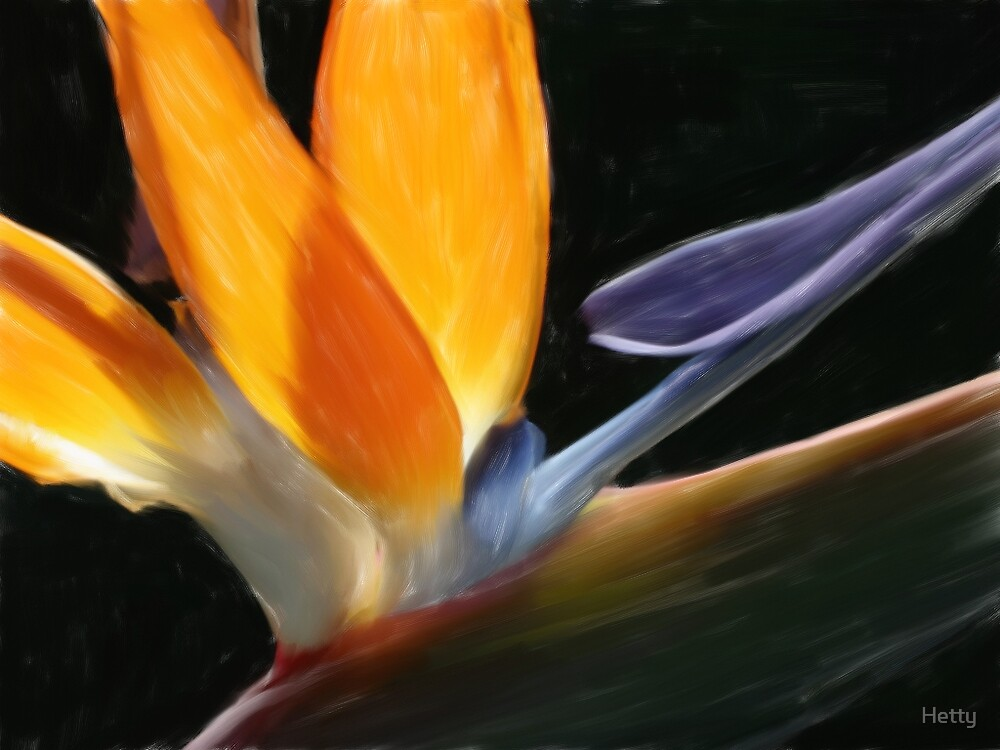 flower by Hetty