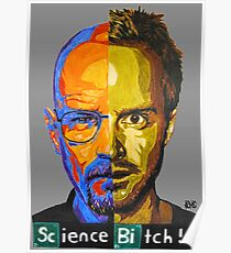 Breaking Bad Science Bitch!!! Poster