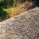 Stone by Chris Charlesworth