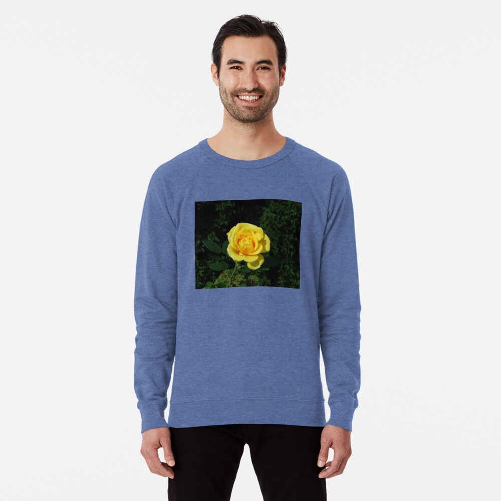 Herbst Rose Leichter Pullover