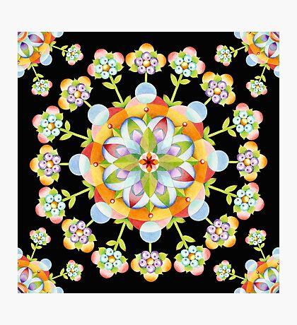 Jaipur Blossom Mandala Photographic Print