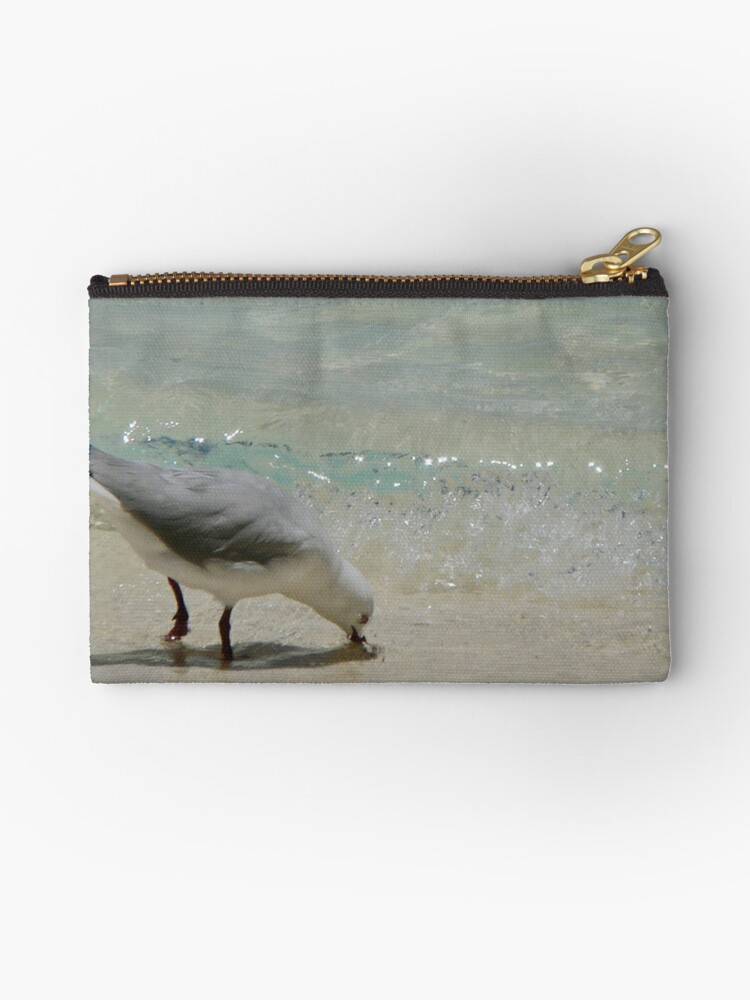 Seagull at Shore by melodyart