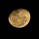 Waning Gibbous by rom01