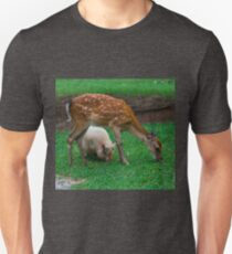 Sika Deer and Pot Bellied Pig T-Shirt