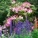 Pretty garden by Susan Moss