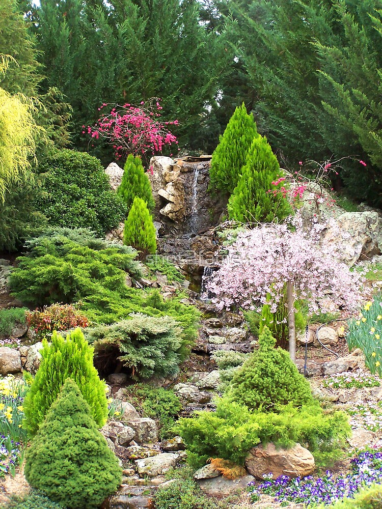Pretty Garden by shot2fame