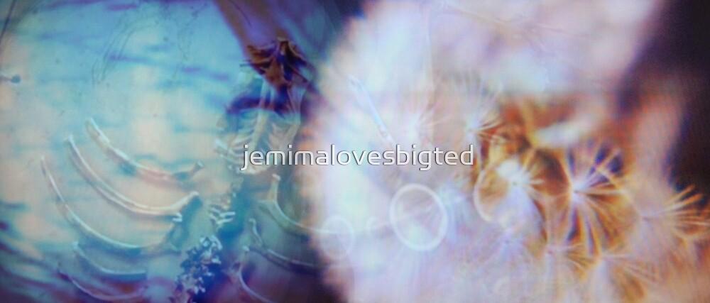 Dandelion Fossil by jemimalovesbigted