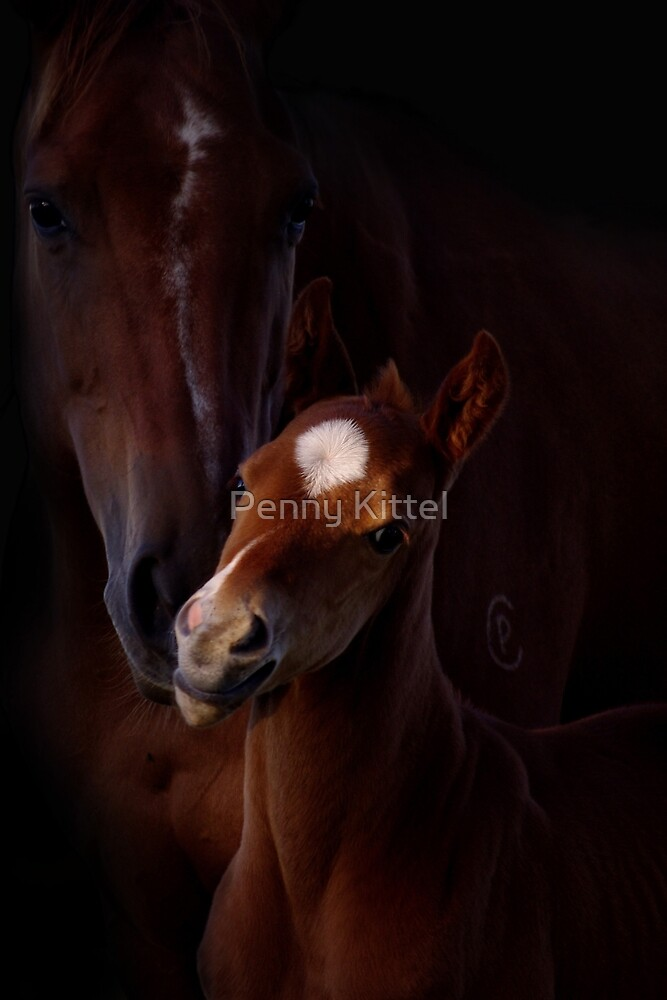 Russet Affection by Penny Kittel